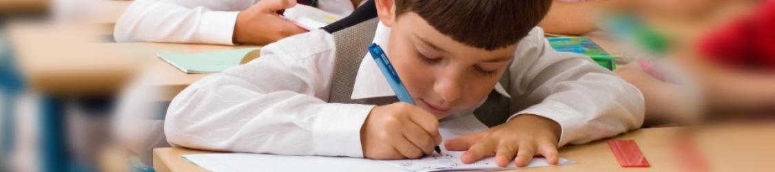 Школьное и дошкольное образование в Болгарии