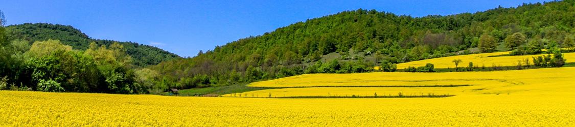Сельхозземля в Болгарии: средняя стоимость по регионам