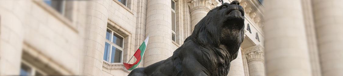 Помощь в переезде в Болгарию по основанию торговый представитель